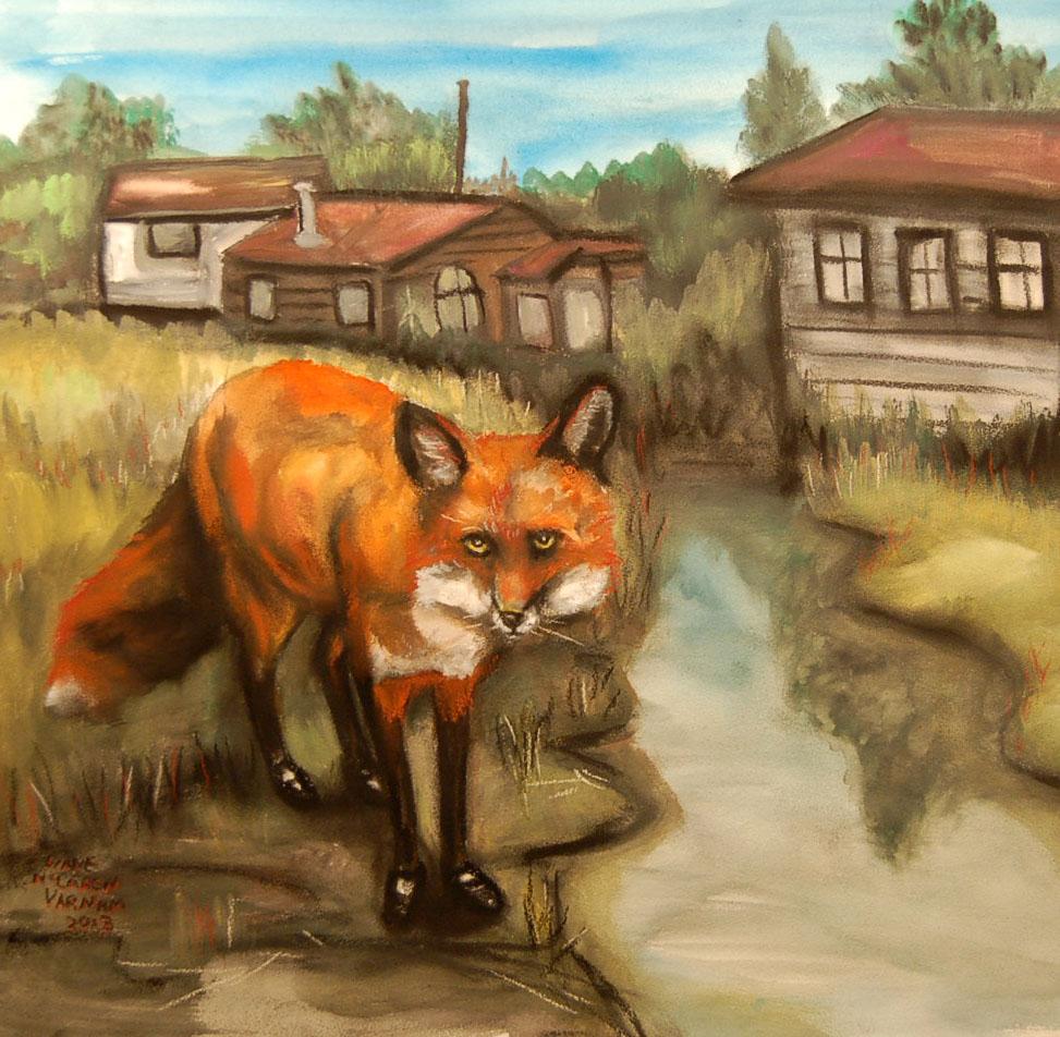 FOX AT FINN SLOUGH